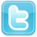 twitter bird blue icon